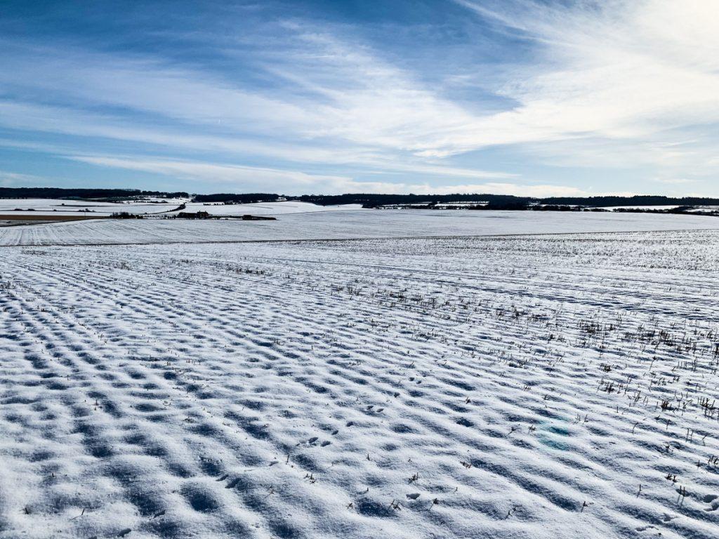 Zimným behaním k lepšej pripravenosti na leto