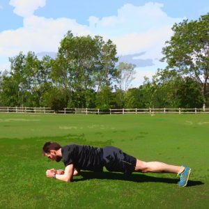 plank-with-stretched-arm-and-leg-1